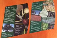 Brisbane Southbank Flora Signage