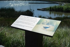 Interpretive Panel